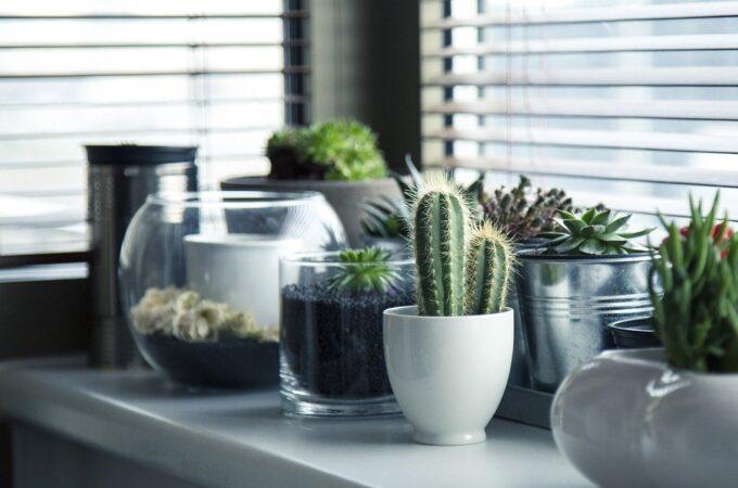 Czy wiesz, czym oddychasz w swoim domu?